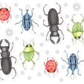 Bright Beetles