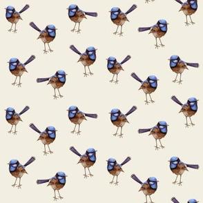 Blue Wren Russet on Vanilla