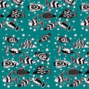 fish_aqua