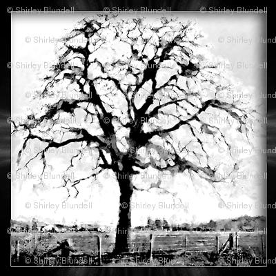 black and white - framed tree