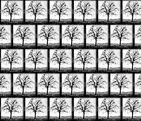 black and white - framed tree fabric by koalalady on Spoonflower - custom fabric
