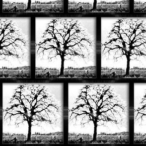 black and white - framed tree