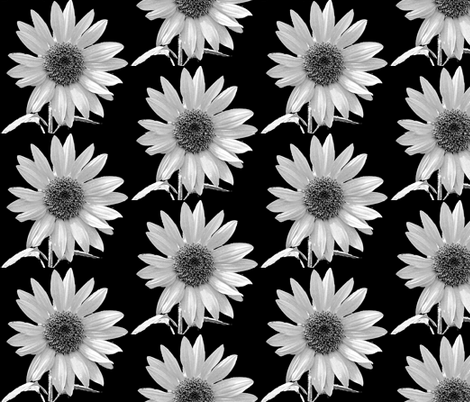 black and white -daisy fabric by koalalady on Spoonflower - custom fabric