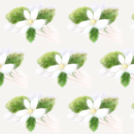 Rose of Sharon Tree Blossoms fabric by melanie_herbruck on Spoonflower - custom fabric