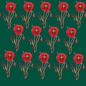 Bold Poppy- Green