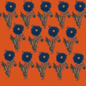 Bold Poppy- orange