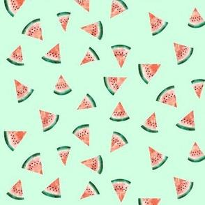 Watermelon Watercolor on Mint Green