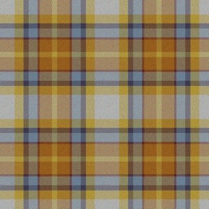 Autumn Plaid 11