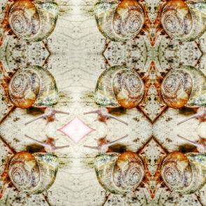 Snail Brocade