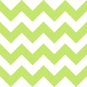 Green Chevron - Medium