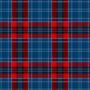 Custom Tartan ~ MacMurrica ~ Dress