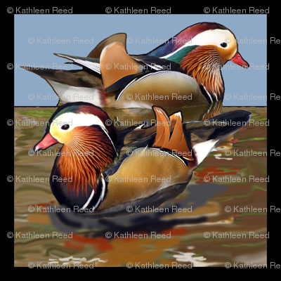 mandarin_duck_black_border quilt square