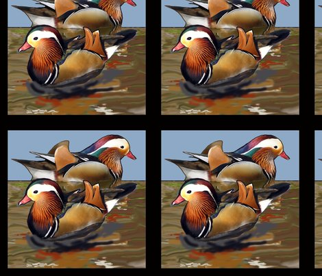 Rmandarin_duck_black_border_shop_preview
