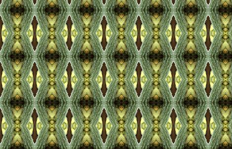 Karela Bitter gourd fabric by gwen_charles on Spoonflower - custom fabric