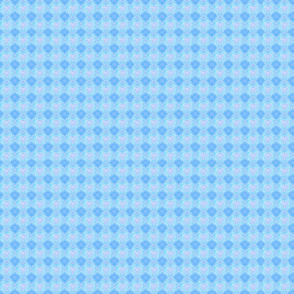 Zebra blue background