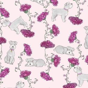 Botanical Schnauzers - pink