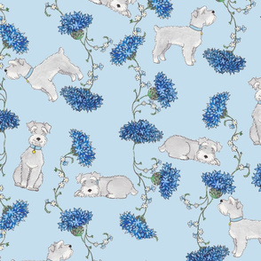 Botanical Schnauzers - blue