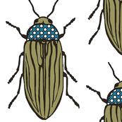 Beetle Bug - Khaki Giant 2