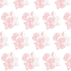 Japanese big-leafed magnolia pink and_white-large