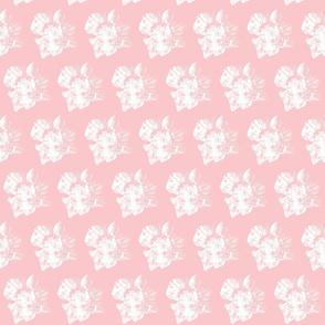 Japanese big-leafed magnolia light pink and white-large