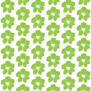pale_maiden light green on white-ch