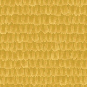 butterfly scales - swallowtail