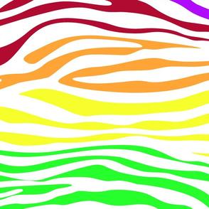 Colorful Zebra Lines