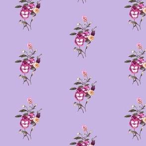 PansyPurple_Lavender