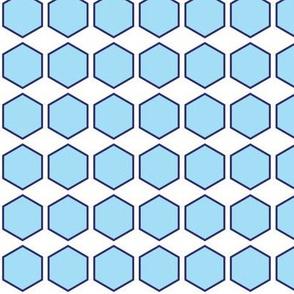 Blue Hexagon Print