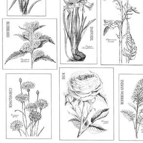 fabric_flowers_36x42