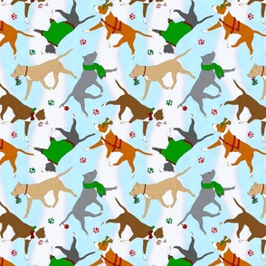 Trotting American Staffordshire Terriers - Christmas snow