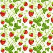 Rstrawberries_white_shop_thumb