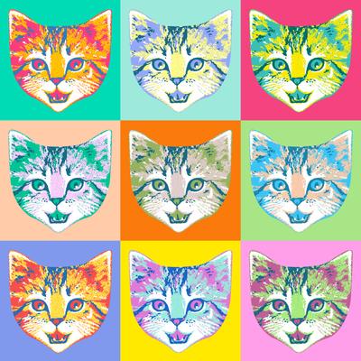 cat pop