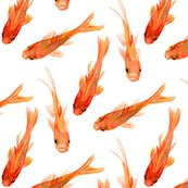 Rrgoldfish_shop_thumb