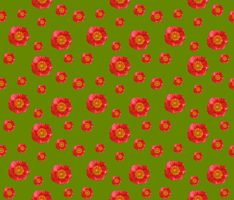Poppy_for_fashion2-ch fabric by ruthjohanna on Spoonflower - custom fabric