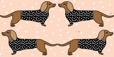 dachshund // dog pet dog doxie sausage dog blush dog print