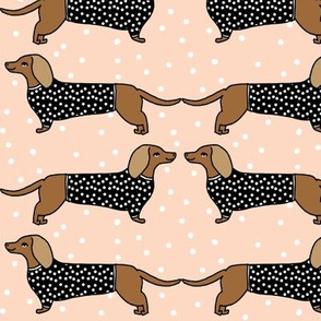dachshund // dog pet dog doxie sausage dog blush dog print