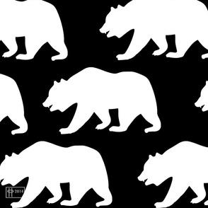 Bear Repeating