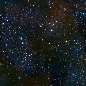 Stars in the night sky - carina