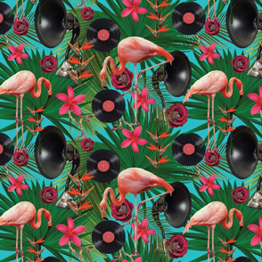 flamingos on teal