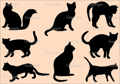 Cat2_preview