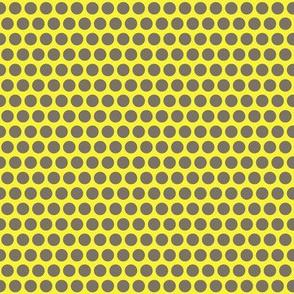 mini wattle polka