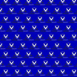 vintage crossfit blue 2