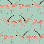 mint flamingos