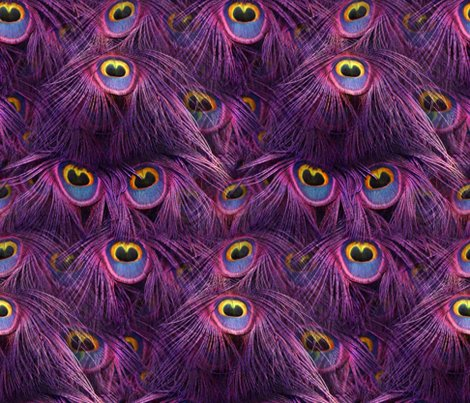 Rrtale_of_the_peacock_tail___scintilating_sunset___peacoquette_designs___copyright_2014_shop_preview