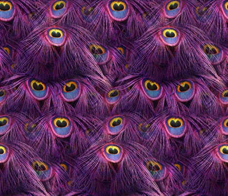 Tale Of The Peacock ~ Scintillating Sunset  fabric by peacoquettedesigns on Spoonflower - custom fabric