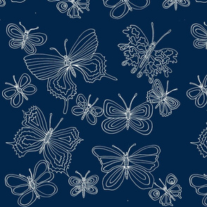 butterfliesnavy white