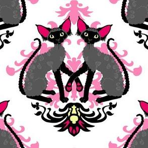 Devon Rex Cat Damask Hot Pink