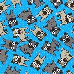 Pug-a-Dot (Blue)