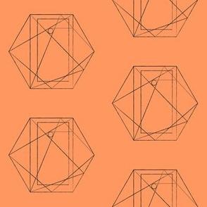 geometric on coral